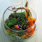 Terrarium-kids-Garden-Activities-pg-full